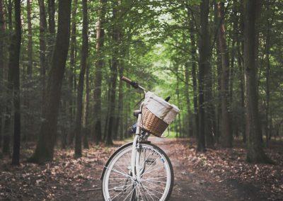 Bike trails nearby